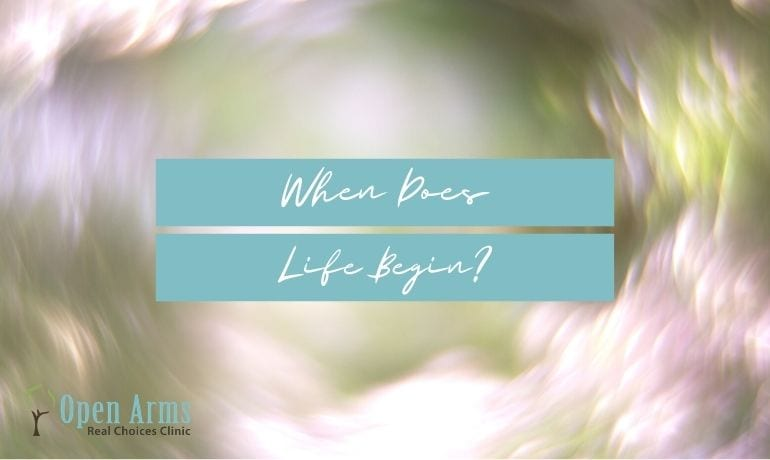 When Does Life Begin